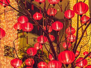 小江祝大家新年快乐